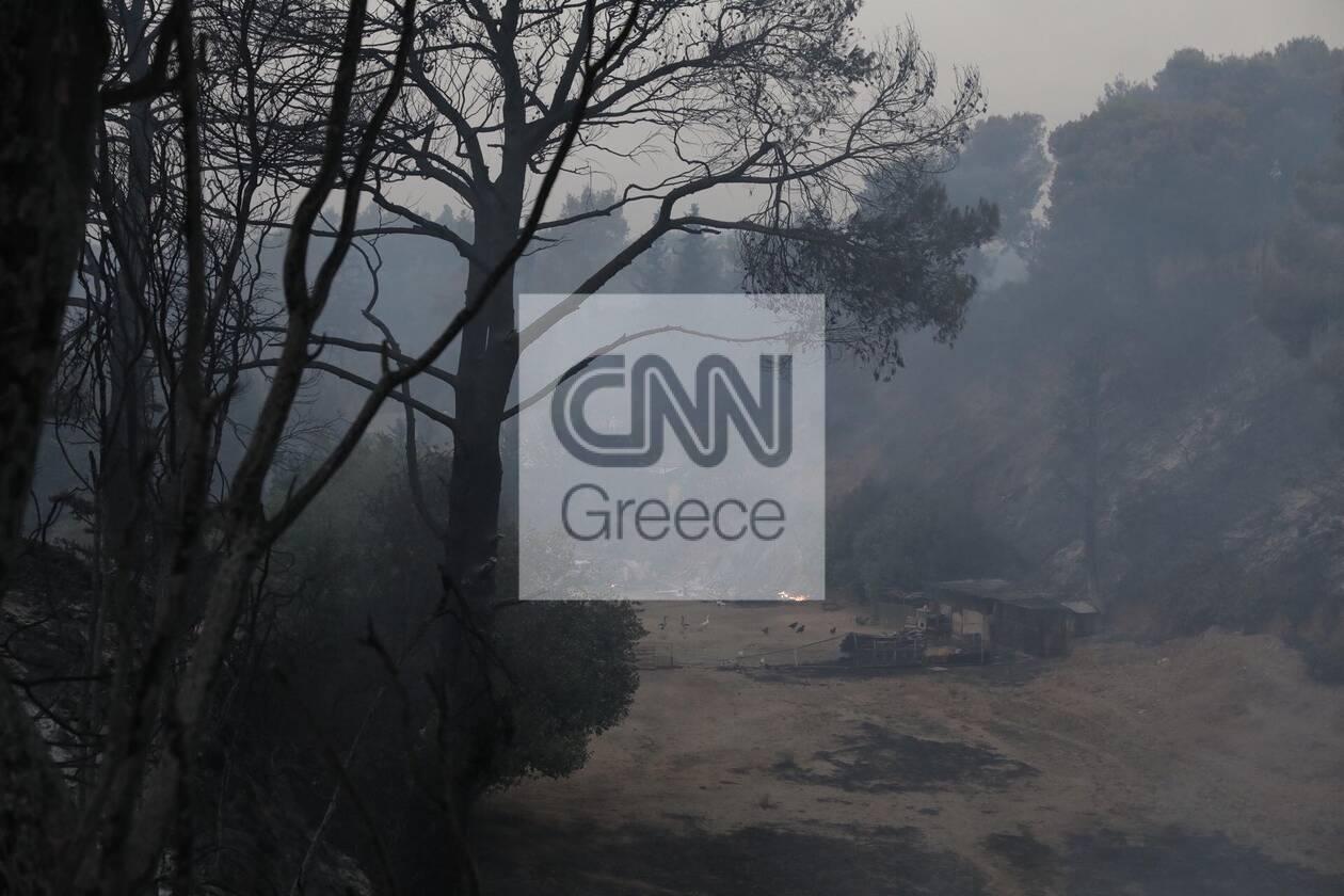 https://cdn.cnngreece.gr/media/news/2021/08/04/276710/photos/snapshot/610a196b101bb.jpg