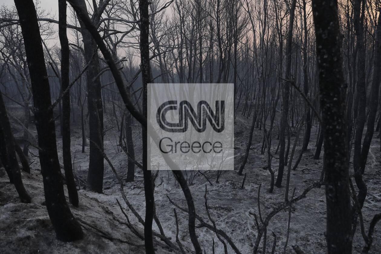 https://cdn.cnngreece.gr/media/news/2021/08/04/276710/photos/snapshot/foria-varumpompi-11.jpg