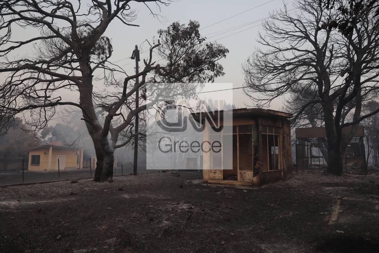 https://cdn.cnngreece.gr/media/news/2021/08/04/276710/photos/snapshot/foria-varumpompi-14.jpg