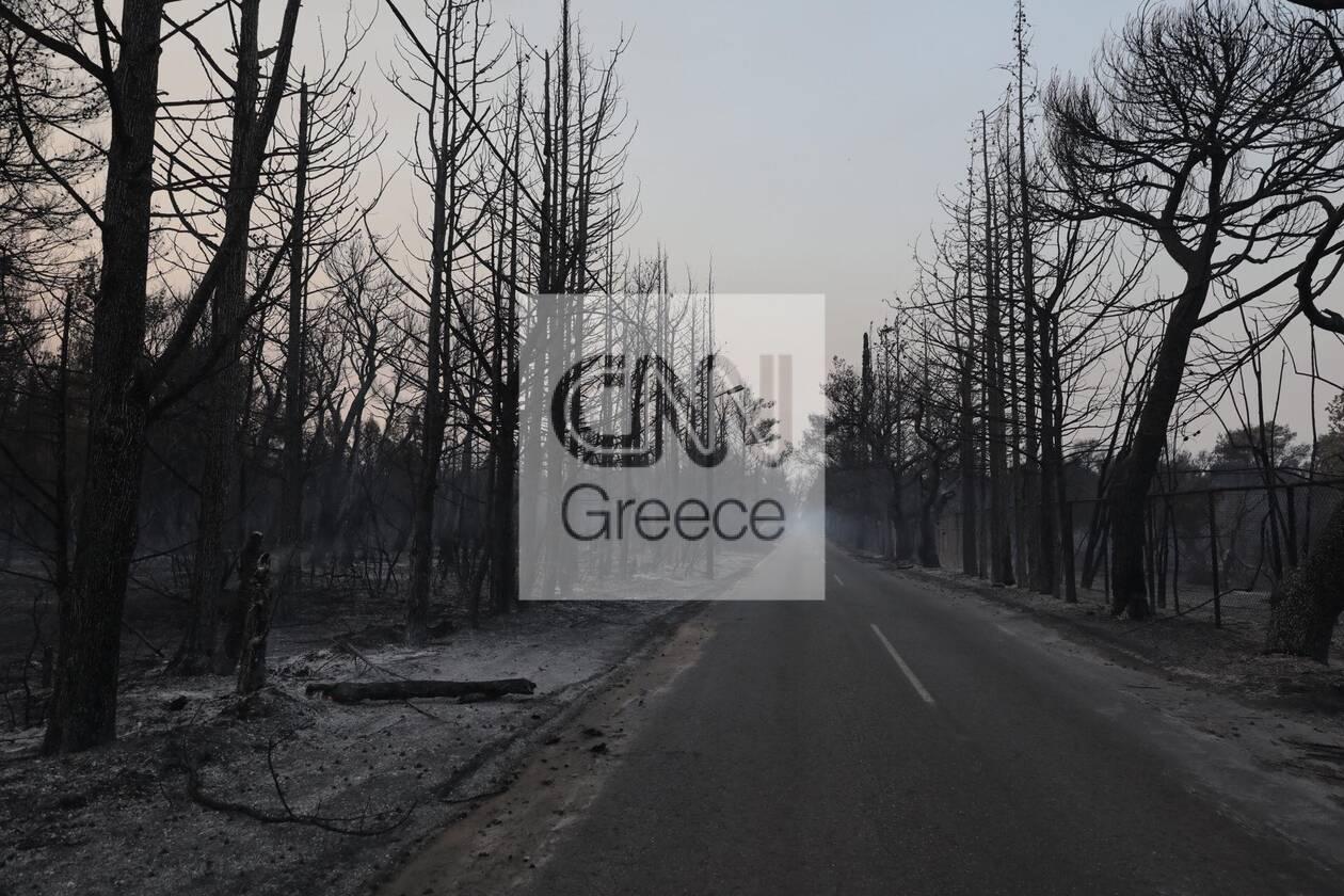 https://cdn.cnngreece.gr/media/news/2021/08/04/276710/photos/snapshot/foria-varumpompi-17.jpg