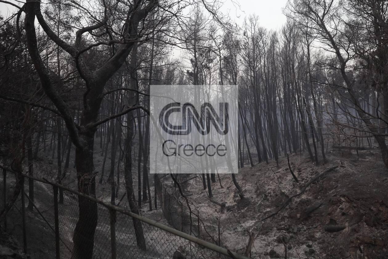 https://cdn.cnngreece.gr/media/news/2021/08/04/276710/photos/snapshot/foria-varumpompi-21.jpg