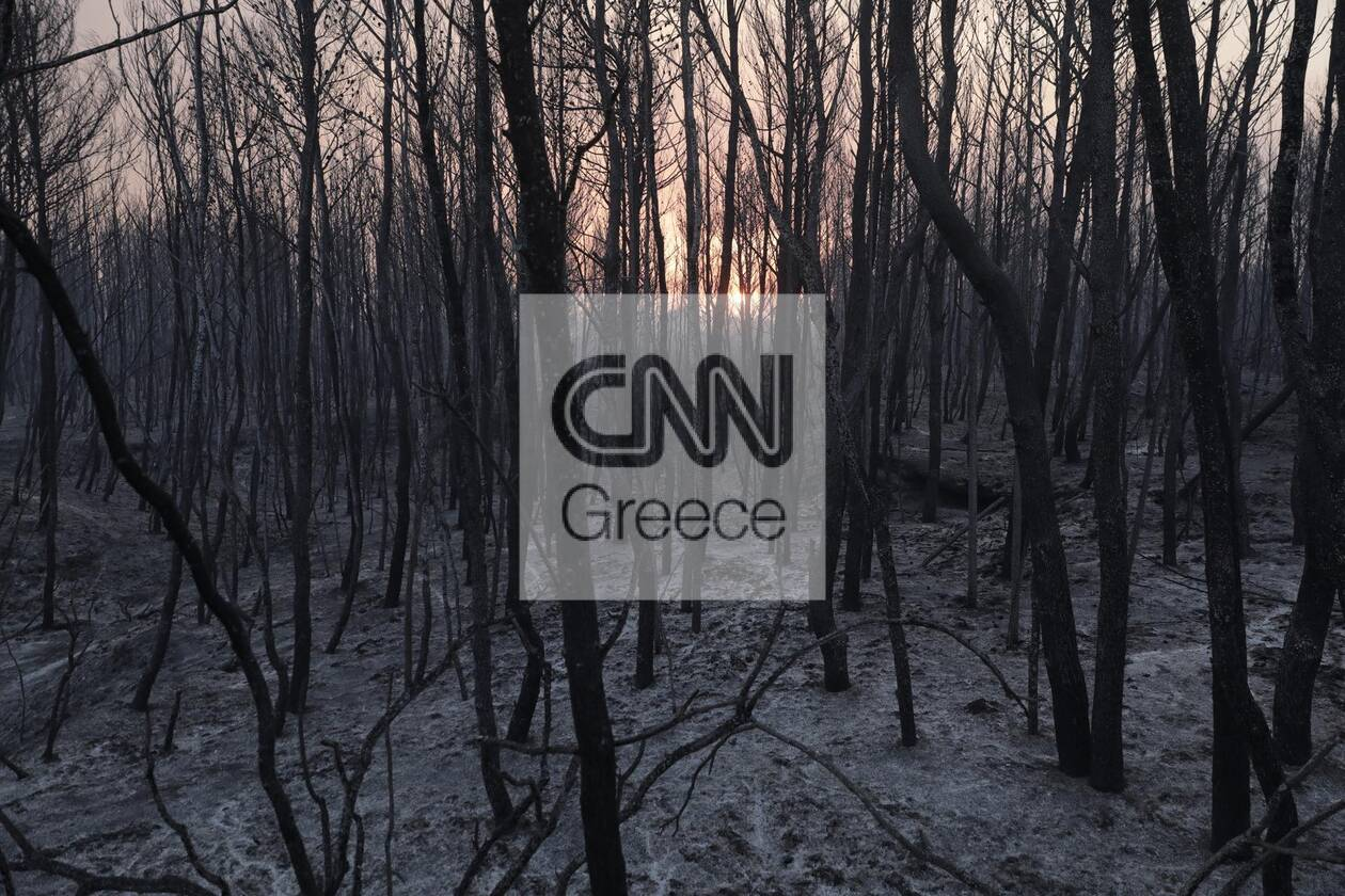 https://cdn.cnngreece.gr/media/news/2021/08/04/276710/photos/snapshot/foria-varumpompi-5.jpg