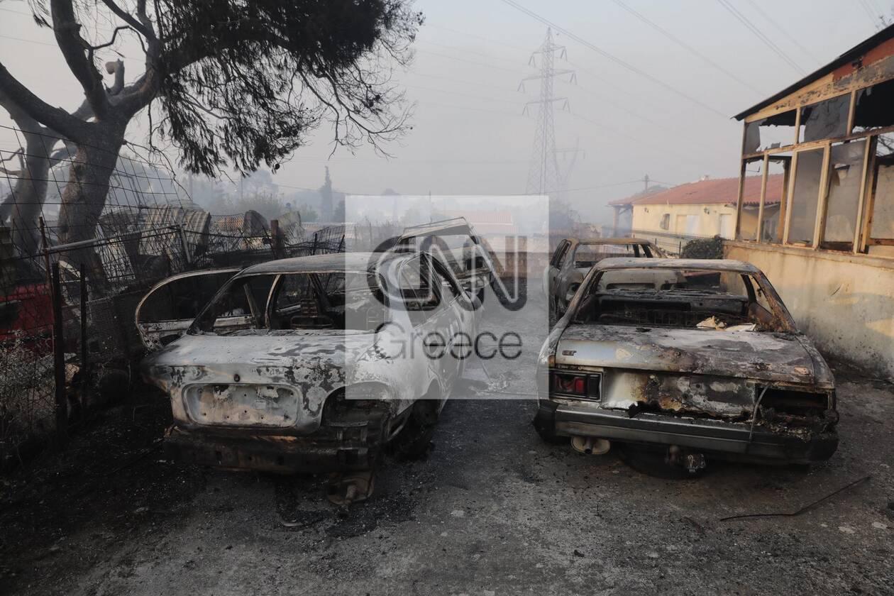 https://cdn.cnngreece.gr/media/news/2021/08/04/276710/photos/snapshot/fotia-attiki-13.jpg