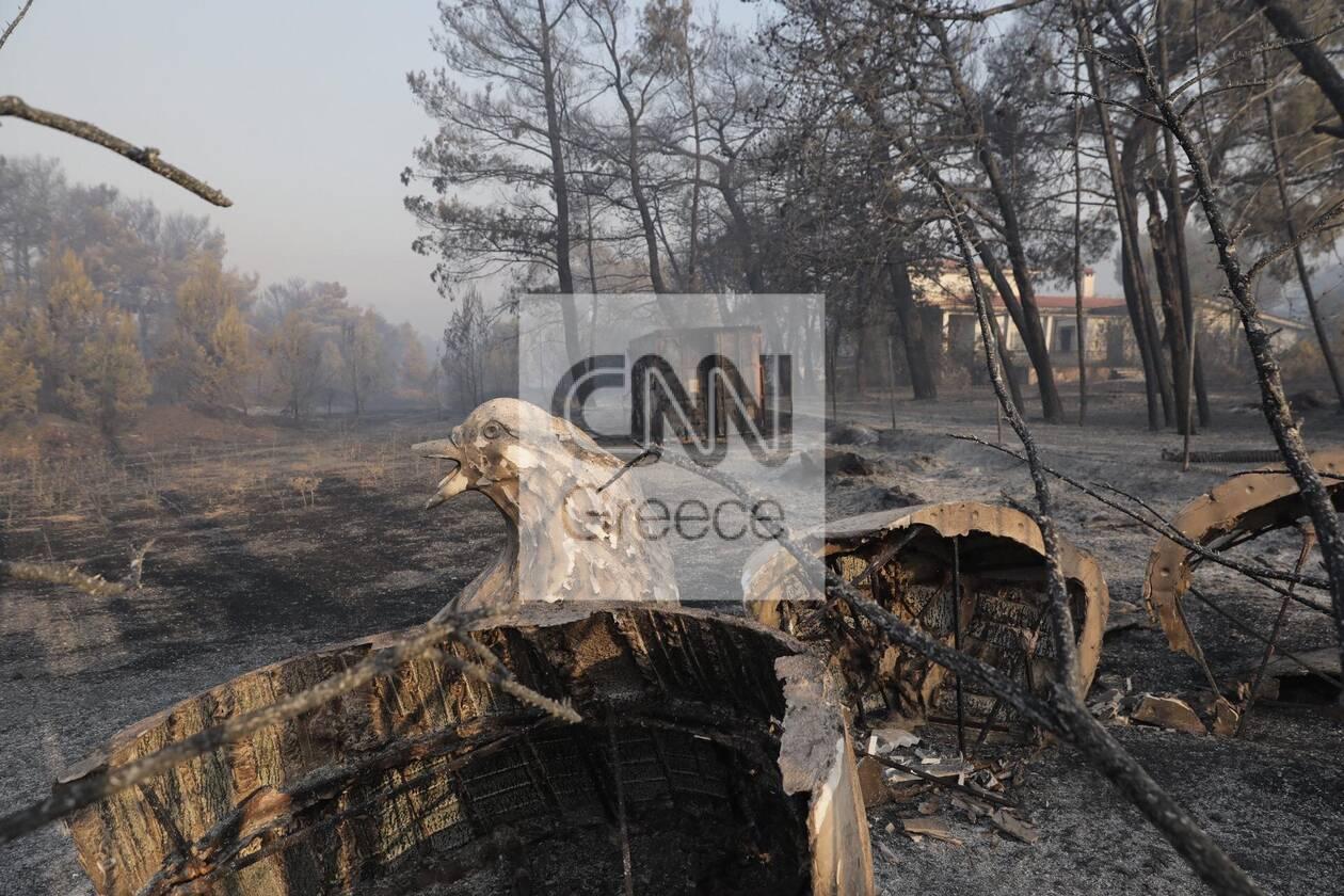https://cdn.cnngreece.gr/media/news/2021/08/04/276710/photos/snapshot/fotia-attiki-4-27.jpg
