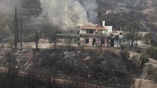 Φωτιά Μεσσηνία: Σε παραλίες ξενύχτησε ο κόσμος, κάηκαν σπίτια