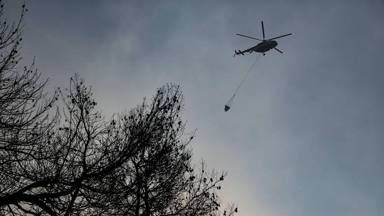 Φωτιά στην Εύβοια: «Μάχη» με τις αναζωπυρώσεις - Κάηκαν τουλάχιστον 150 σπίτια