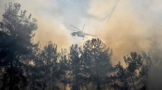 Φωτιά στην Ηλεία: Τραυματίστηκε αστυνομικός