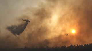 Φωτιά στη Βαρυμπόμπη: Ολοκληρώθηκε η μεταφορά των αλόγων στο Κέντρο Ιππασίας Μαρκόπουλου