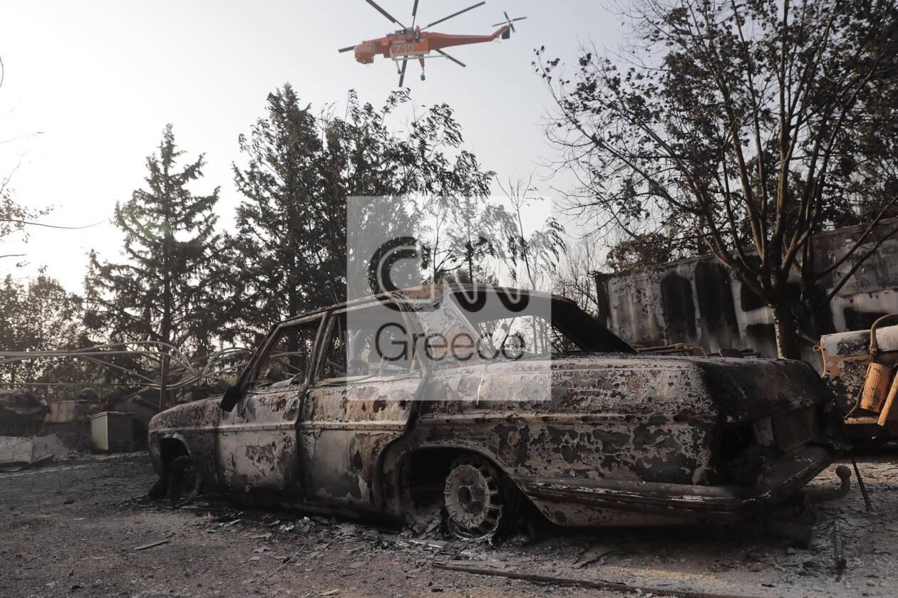 https://cdn.cnngreece.gr/media/news/2021/08/04/276746/photos/snapshot/fotia-attiki-1-75.jpg