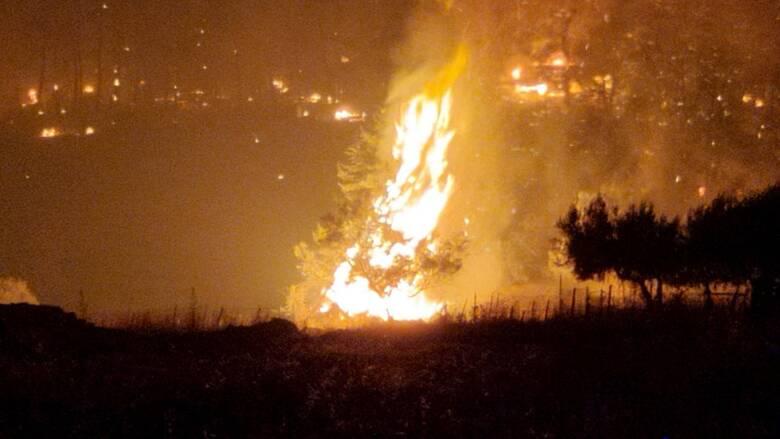 Φωτιά στη Λίμνη Ευβοίας: Εκκένωση δύο χωριών - Κυκλώνουν το μοναστήρι του Οσίου Δαυίδ οι φλόγες