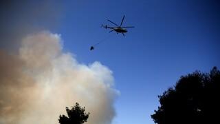 Φωτιά στη Μέλπεια Μεσσηνίας: Επί ποδός η Πυροσβεστική