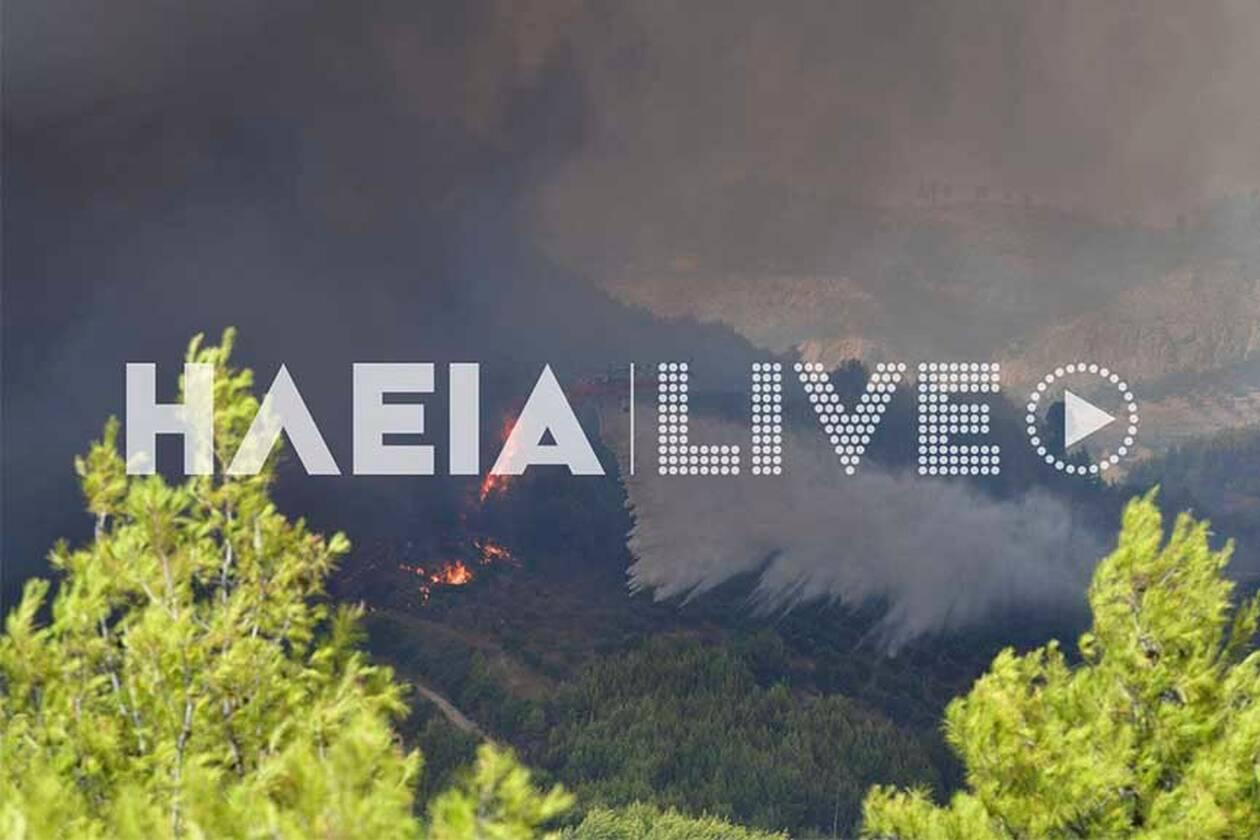 https://cdn.cnngreece.gr/media/news/2021/08/04/276802/photos/snapshot/Fotia-OLYMPIA-small14.jpg