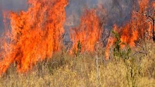 Πολύ υψηλός κίνδυνος πυρκαγιάς την Πέμπτη σε πολλές περιοχές της χώρας