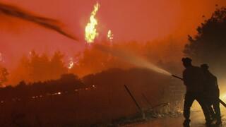 Συνεχίζεται η μάχη με τις φλόγες - Πύρινα μέτωπα σε Εύβοια, Αρχαία Ολυμπία και Μεσσηνία