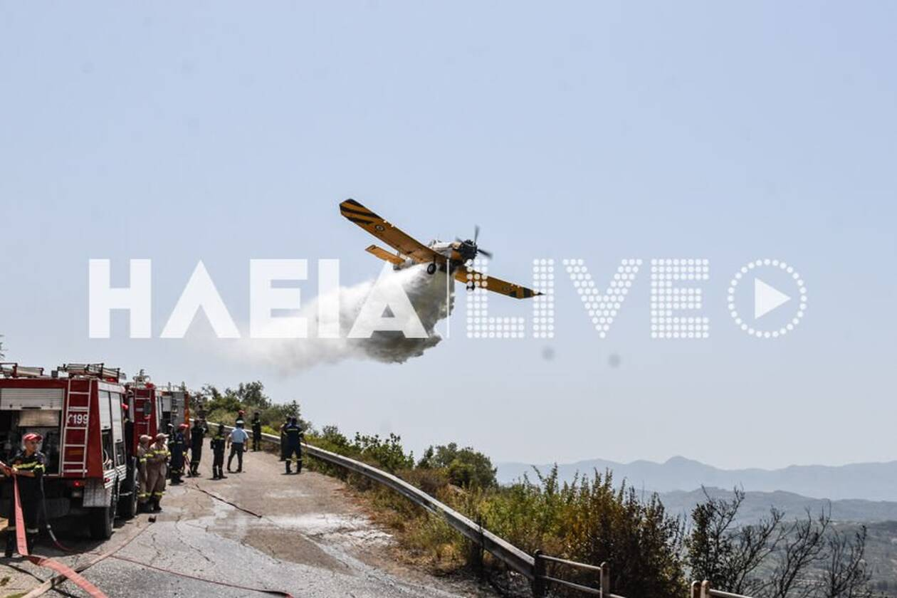 https://cdn.cnngreece.gr/media/news/2021/08/05/276816/photos/snapshot/fotia_kaukania-15.jpg