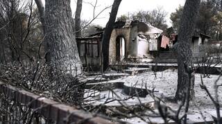 Προειδοποίηση Λέκκα: Πάμε σε εφιάλτη διαρκείας - Μετά τις φωτιές έρχονται οι πλημμύρες
