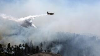 Φωτιά στην Εύβοια: Νέες εκκενώσεις οικισμών - Δυσκολεύονται τα εναέρια μέσα λόγω καπνών