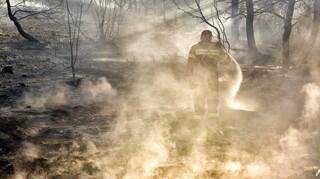 Φωτιά στη Μεσσηνία: Μαίνονται οι φλόγες στην περιοχή Μέλπεια