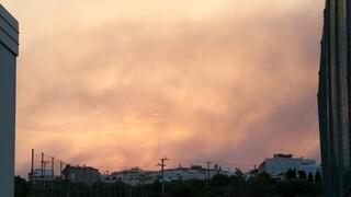 Βασιλακόπουλος για φωτιές: Οδηγίες για όσους νιώσουν δυσφορία