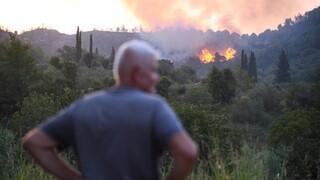 Φωτιά Αρχαία Ολυμπία: Αναζωπυρώσεις αντιμετωπίζει η Πυροσβεστική - Ενισχύθηκαν οι άνεμοι