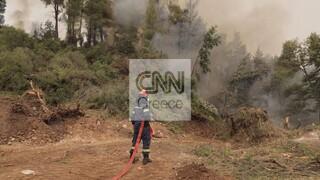 Πύρινη «πολιορκία» στην Εύβοια: Οι φλόγες σε απόσταση αναπνοής από τις Κεχριές