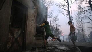 Φωτιές Αττική: Τα ποσά που θα δοθούν στους πυρόπληκτους - Ανακοινώσεις Βορίδη