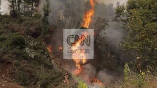 Εύβοια: Τεράστια μάχη σε τρία ανεξέλεγκτα πύρινα μέτωπα