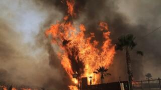 Παρέμβαση Εισαγγελίας για τα αίτια της καταστροφικής πυρκαγιάς στη Βαρυμπόμπη