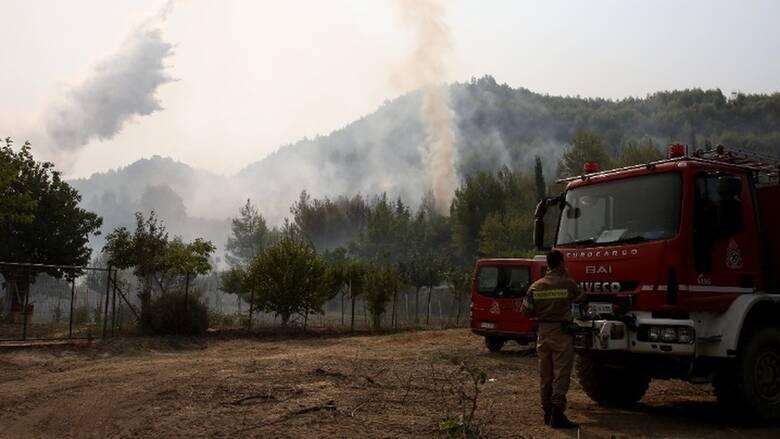Μεγάλη αναζωπύρωση της φωτιάς στη Βαρυμπόμπη - Νέο μήνυμα από το 112
