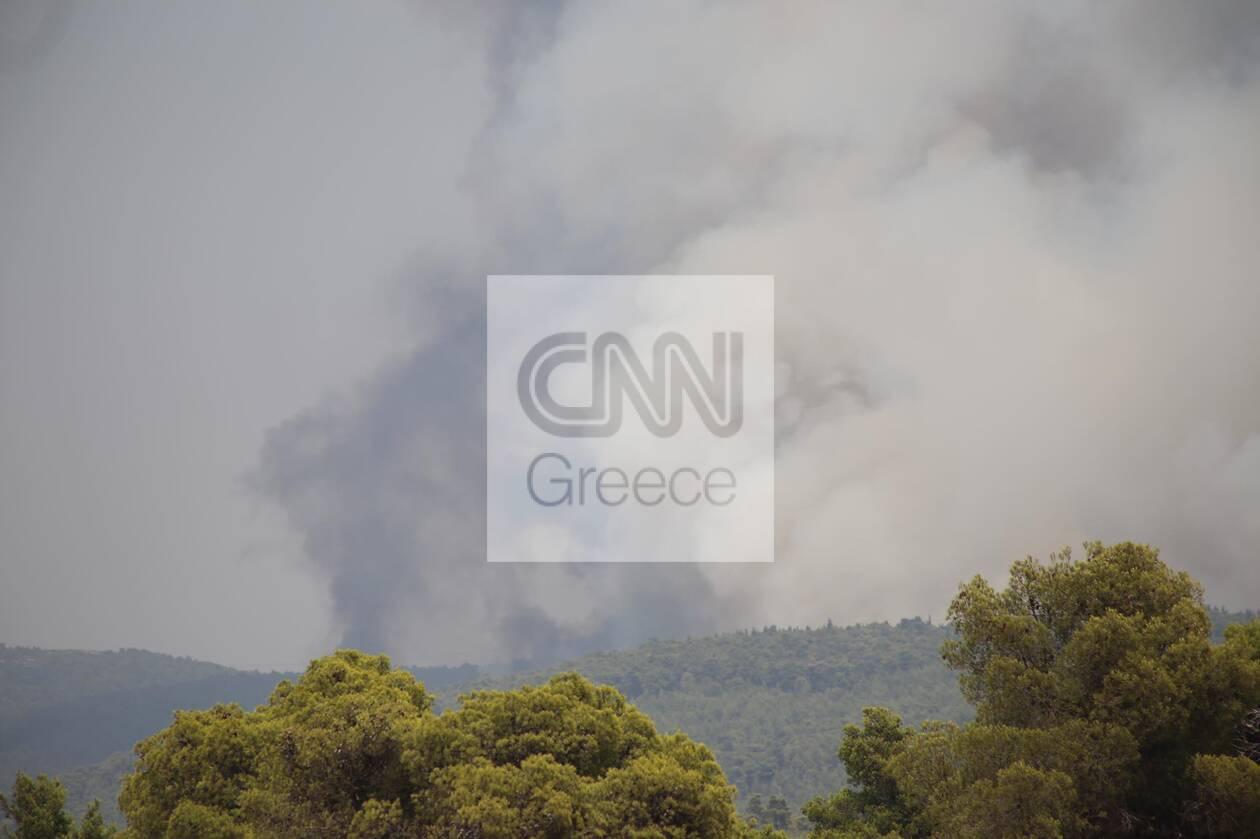 https://cdn.cnngreece.gr/media/news/2021/08/05/276873/photos/snapshot/anazopurosi5.jpg