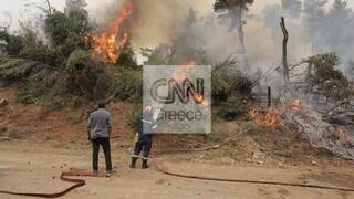 Φωτιά Εύβοια: Εκκένωση σε Αγία Άννα, Μαντούδι - Ανεξέλεγκτα πύρινα μέτωπα