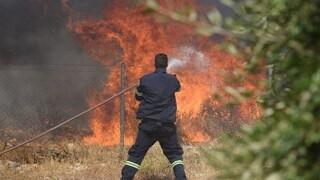 Φωτιά Μεσσηνία: Φλόγες στις παρυφές του χωριού Καρνάσι - Εκκένωση σε Διαβολίτσι, Μέλπεια