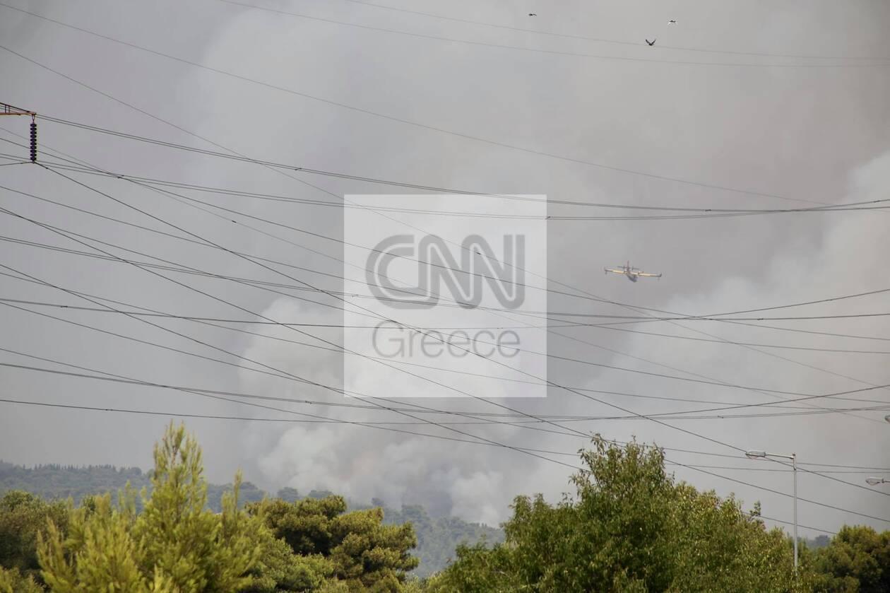 https://cdn.cnngreece.gr/media/news/2021/08/05/276892/photos/snapshot/610bdb1306ab4.jpg