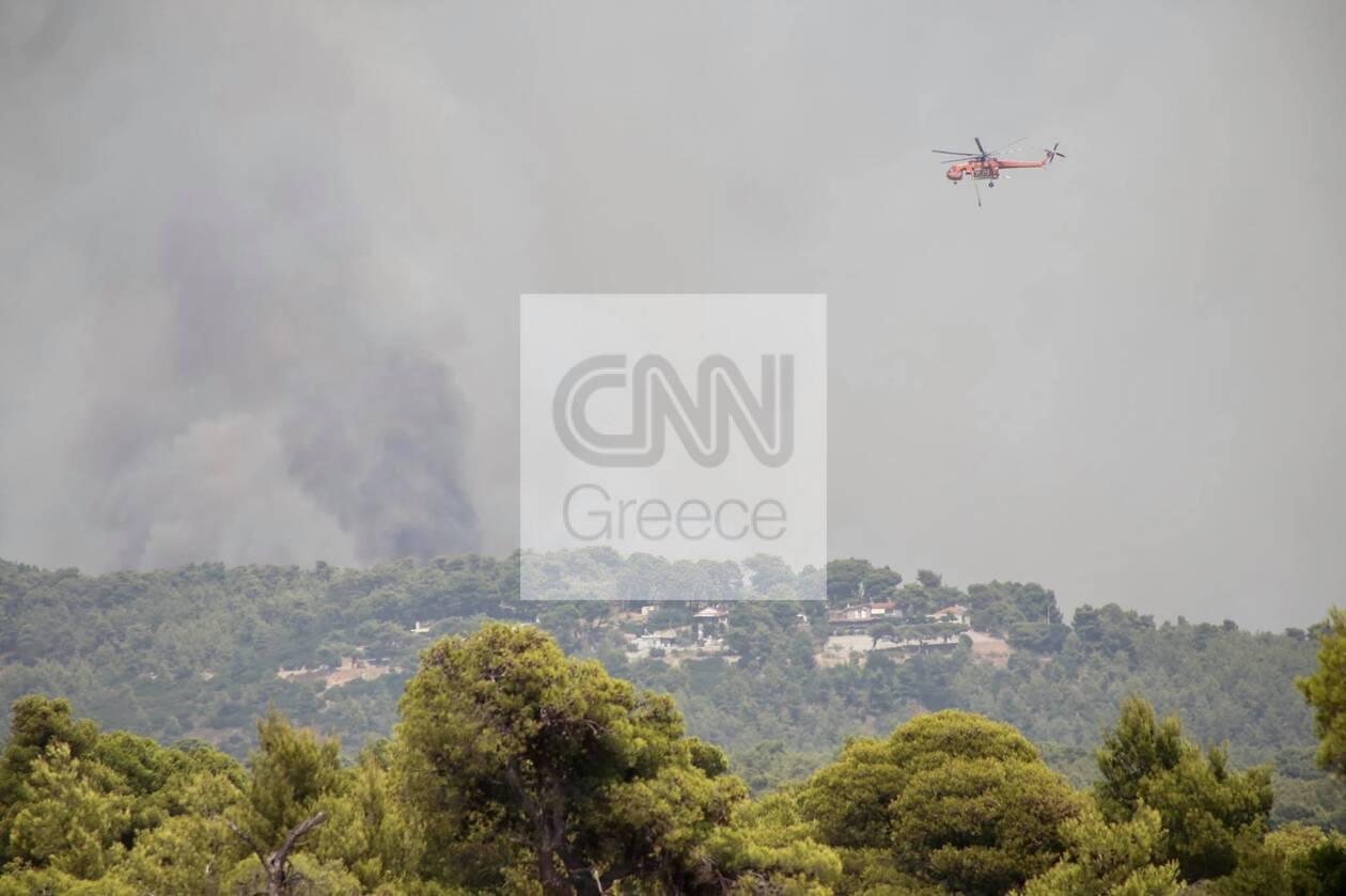 https://cdn.cnngreece.gr/media/news/2021/08/05/276892/photos/snapshot/610bdb13a1d61.jpg