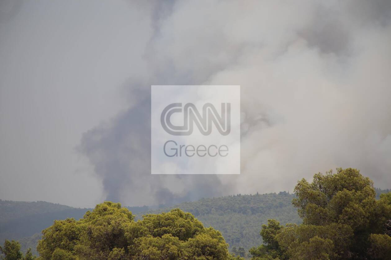 https://cdn.cnngreece.gr/media/news/2021/08/05/276892/photos/snapshot/anazopurosi5.jpg