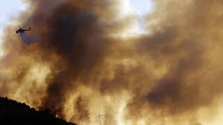 Φωτιά Ηλεία: Εγκλωβισμένοι στο χωριό Κλάδεος, εκκενώνεται το χωριό Λάλα - Στις φλόγες σπίτια
