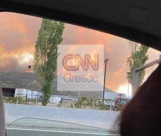 Φωτιά Βαρυμπόμπη: Έκλεισε η Εθνική Οδός Αθηνών-Λαμίας