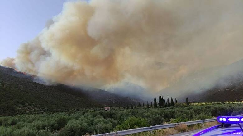 Φωτιά και στη Φωκίδα: Εκκενώθηκαν τα χωριά Ελαία και Καλλιθέα