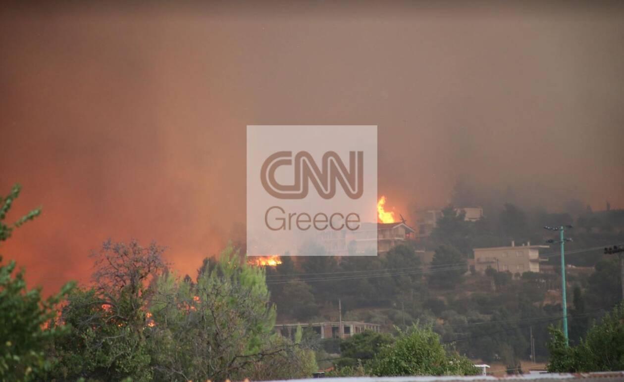 https://cdn.cnngreece.gr/media/news/2021/08/05/276913/photos/snapshot/afidnes1.jpg
