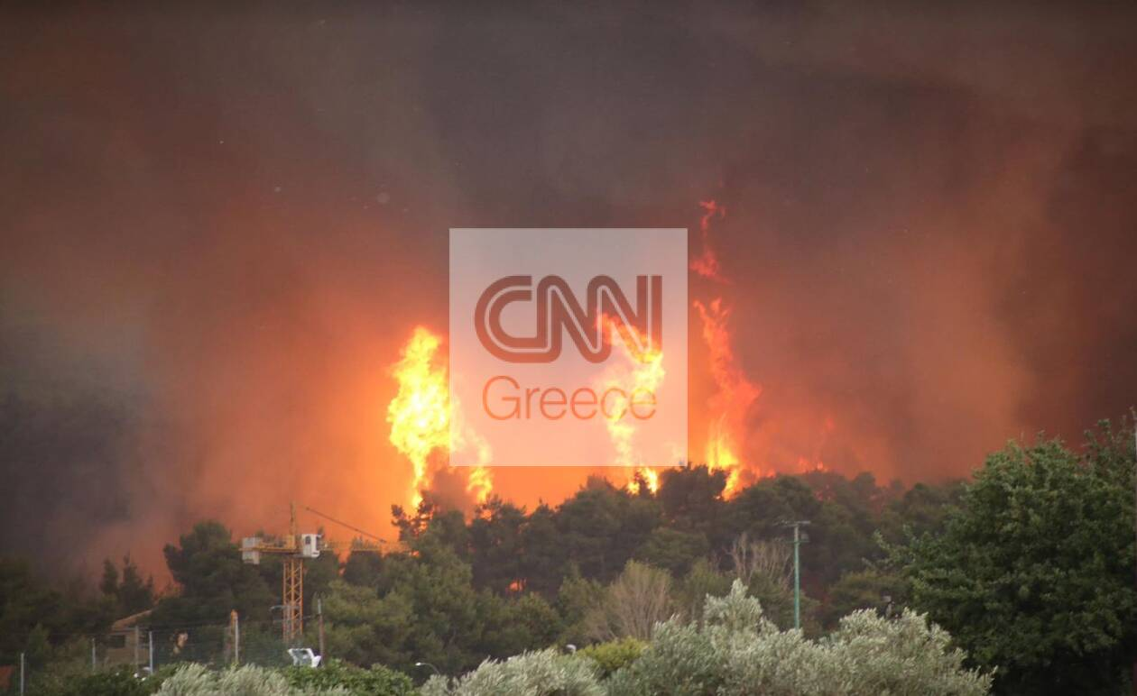 https://cdn.cnngreece.gr/media/news/2021/08/05/276913/photos/snapshot/afidnes3.jpg