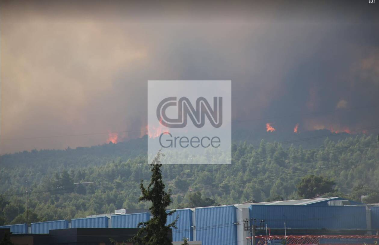 https://cdn.cnngreece.gr/media/news/2021/08/05/276913/photos/snapshot/var1.jpg