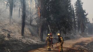 ΠΝΠ: Απαγόρευση εισόδου σε δάση και επικίνδυνες για φωτιά εργασίες έως τις 9 Αυγούστου