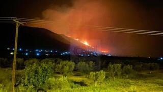 Φωτιά και στη Φωκίδα: Δύσκολη νύχτα, εκκενώνεται η Τολοφώνα
