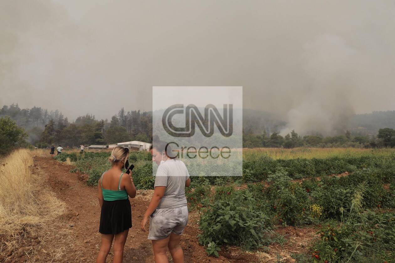 https://cdn.cnngreece.gr/media/news/2021/08/05/276930/photos/snapshot/fotia-kexries-12.jpg