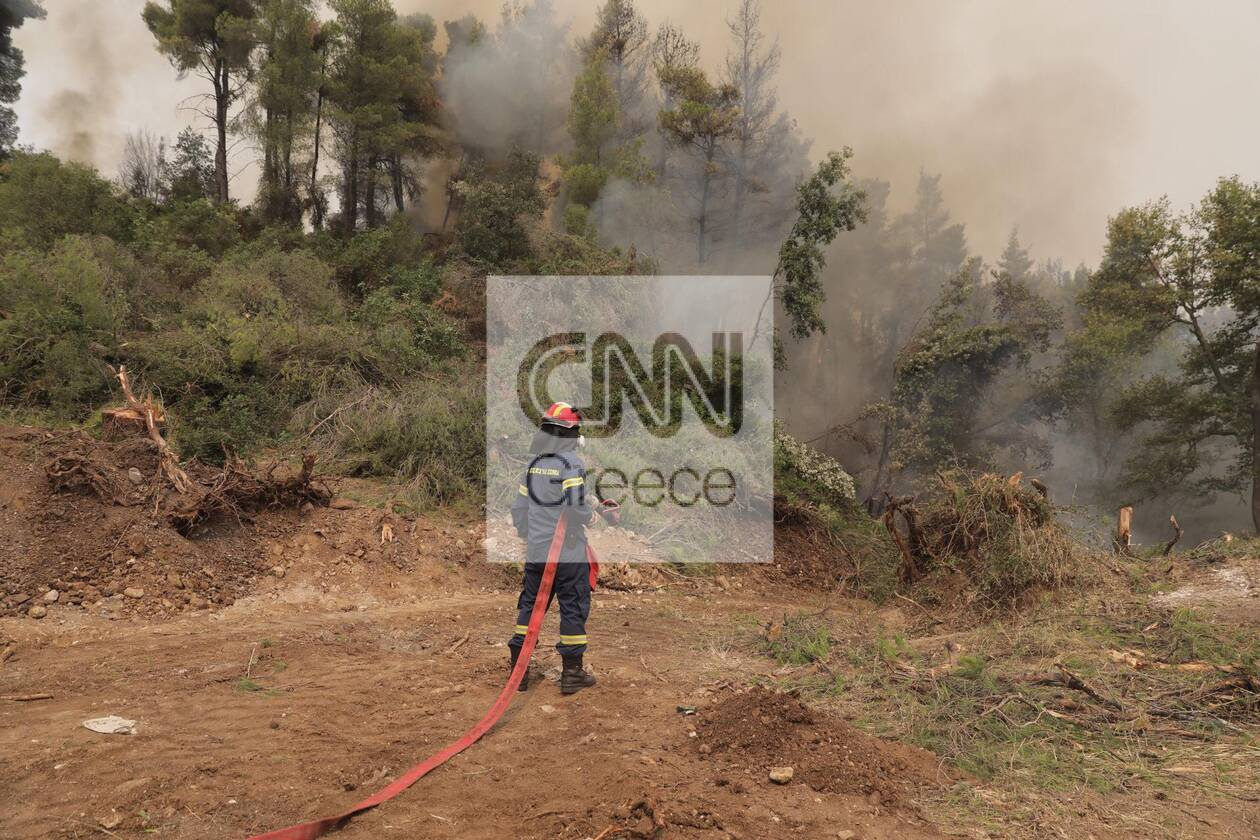 https://cdn.cnngreece.gr/media/news/2021/08/05/276930/photos/snapshot/fotia-kexries-2.jpg