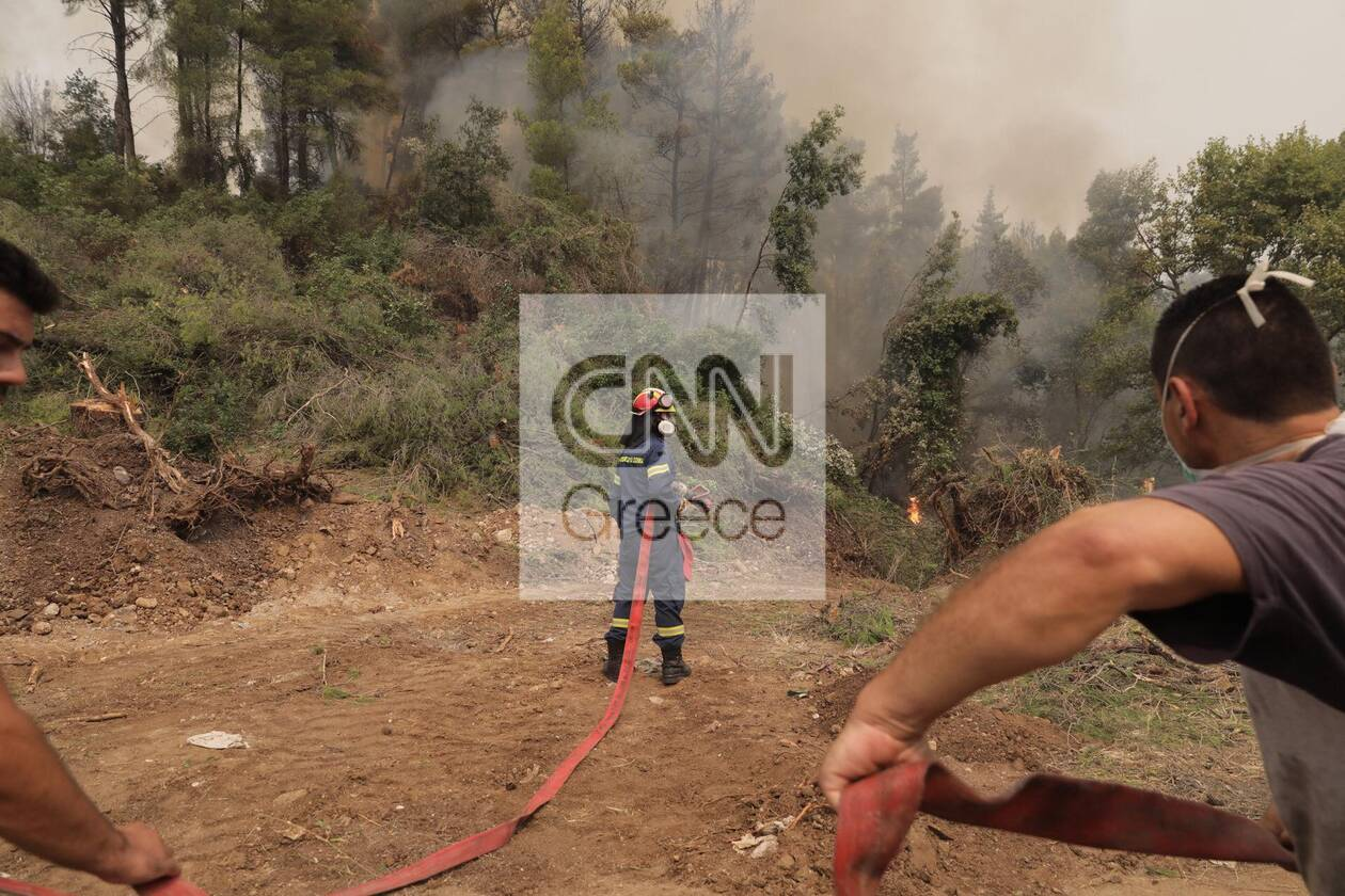 https://cdn.cnngreece.gr/media/news/2021/08/05/276930/photos/snapshot/fotia-kexries-6.jpg