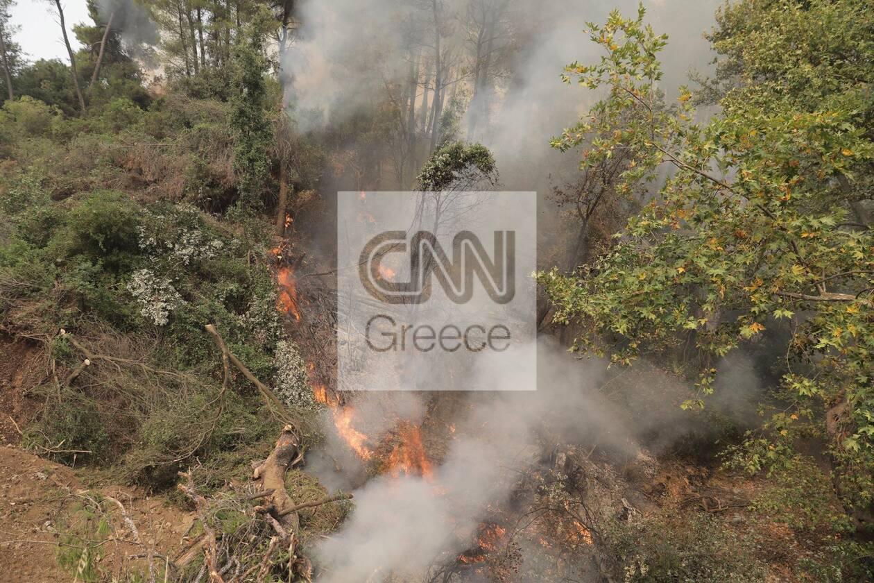 https://cdn.cnngreece.gr/media/news/2021/08/05/276930/photos/snapshot/fotia-kexries-9.jpg