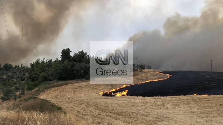 Φωτιές Εύβοια: Μάχη από χωριό σε χωριό - Απεγκλωβίστηκαν εκατοντάδες διά θαλάσσης