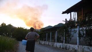 Φωτιά Ηλεία: «Κόλαση» με τα πύρινα μέτωπα - Εκκενώθηκαν οικισμοί