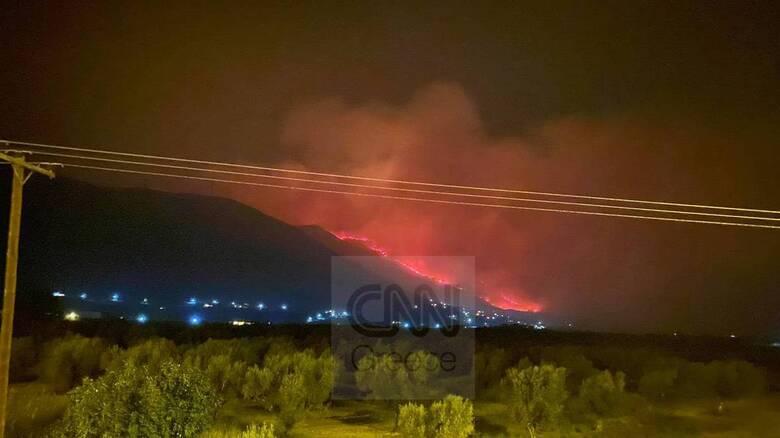 Φωτιά στη Φωκίδα: Ανεξέλεγκτες οι φλόγες - Έφτασαν σε σπίτια